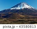 精進湖・パノラマ台から見る冬の富士山 43580813