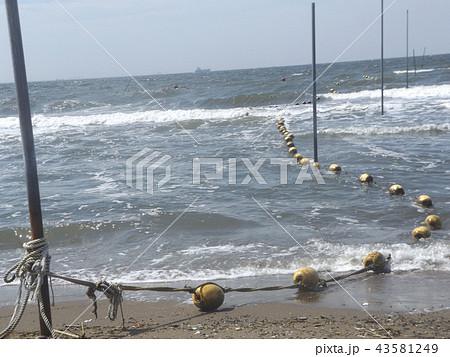 黄色い海水浴場表示ブイ 43581249