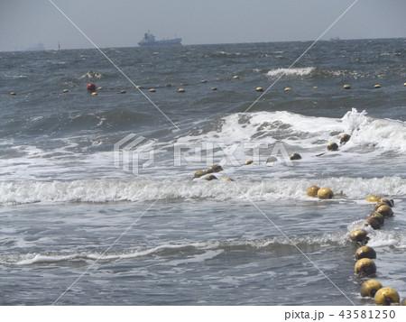 黄色い海水浴場表示ブイ 43581250