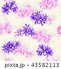 和柄 彼岸花の柄, 43582113