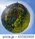 Doi Inthanon National Park Of ChiangMai, Thailand  43583900