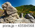 金峰山 風景 秋の写真 43584568