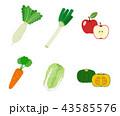 冬の野菜|イラスト 43585576