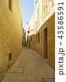 Empty alley in Mdina. 43586591