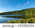 朝の湖 43590204
