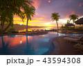 リゾートプール 43594308