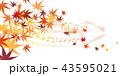 紅葉 43595021