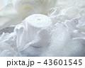 白い手芸材料 43601545