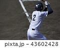 野球 選手 打つの写真 43602428