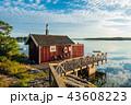 スウェーデン スエーデン 海岸の写真 43608223