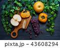 秋の果物 (葡萄,柿,梨) 43608294