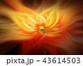 バックグラウンド 抽象的 ライトのイラスト 43614503