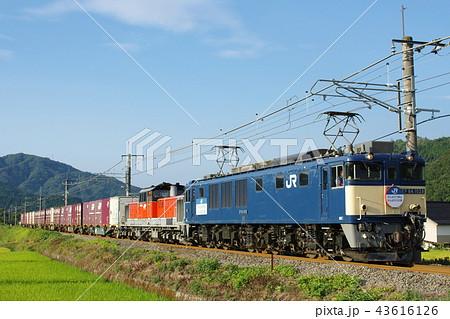 山陰本線 迂回 貨物列車5 43616126