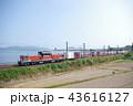 山陰本線 迂回 貨物列車2 43616127