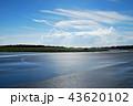 雨上がりの大島空港 43620102
