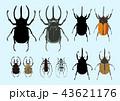 昆虫 カブトムシ、カナブン、カミキリムシ、シルエット 43621176
