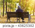 Elderly woman sitting on a bench in autumn park 43625302