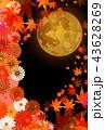 紅葉 中秋の名月 秋のイラスト 43628269