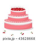 ケーキ サクランボ チェリーのイラスト 43628668
