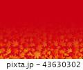 楓 紅葉 秋のイラスト 43630302