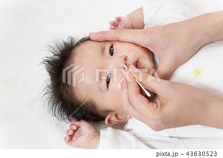 新生児の鼻掃除方法を説明するマニュアル用写真、鼻を綿棒で清潔にするクローズアップ 43630523