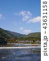 嵐山 秋 京都の写真 43631158