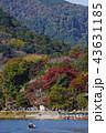 嵐山 秋 京都の写真 43631185