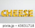 チーズ 単語 立体のイラスト 43631718