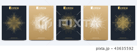 Modern vector template for brochure leaflet flyer cover catalog magazine or annual report. Golden 43635592