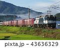 山陰本線 迂回 貨物列車7 43636329