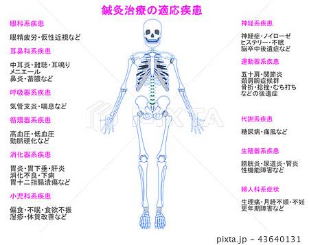 鍼灸治療の適応疾患図 骨格5(ピンク色・説明あり) 43640131