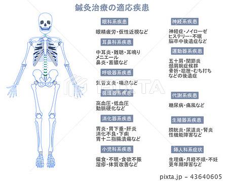 鍼灸治療の適応疾患図 骨格9(グレー色・説明あり) 43640605