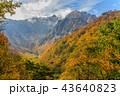 谷川岳 山 秋の写真 43640823