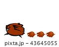 亥年 猪 亥のイラスト 43645055