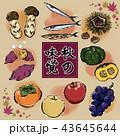 秋 秋の味覚 食材のイラスト 43645644