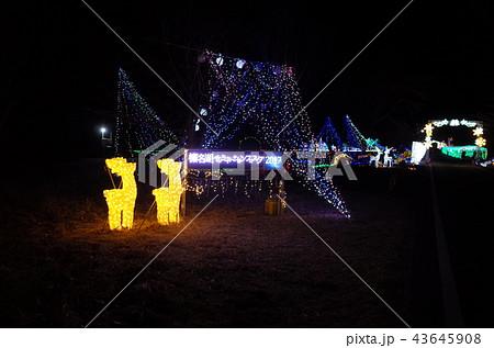 群馬県榛名湖のクリスマスイルミネーションフェスティバル、抽象的なきらきらした装飾、ピンぼけの光 43645908