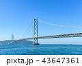 明石海峡大橋  43647361