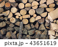 Firewood 43651619