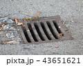 Metal drain grate 43651621