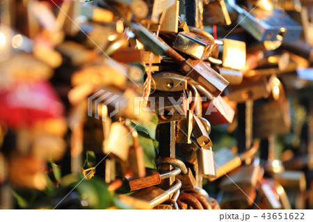 Romantic padlocks 43651622