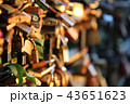 Romantic padlocks 43651623