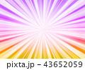 紫放射状 43652059
