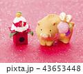 亥年 亥 猪の写真 43653448