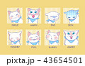 猫 アイコン 表情のイラスト 43654501