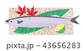 さんま 秋刀魚 秋の味覚のイラスト 43656283