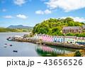 landscape of the Portree harbor in scotland, uk 43656526