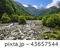 風景 夏 太田切川の写真 43657544