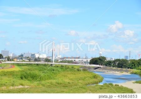 高幡橋よりふれあい橋、多摩モノレールを望む (2018.9) 43663853