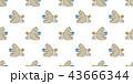 くま クマ 熊のイラスト 43666344