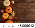 あき 秋 ベジタブルの写真 43666642